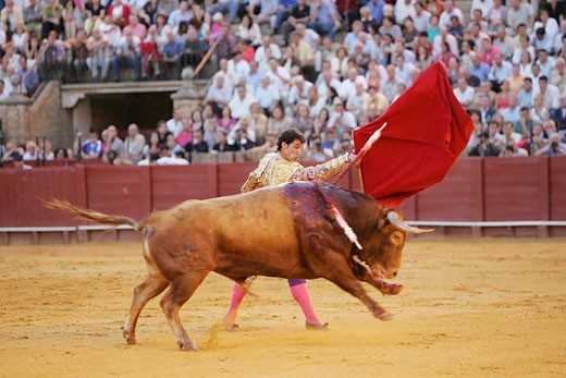 Stock Photo: 1925-1130 Luis Vilches  Spanish bullfighter Taken during a bullfight at the Real Maestranza bullring  Seville  Spain  on 15 June 2006