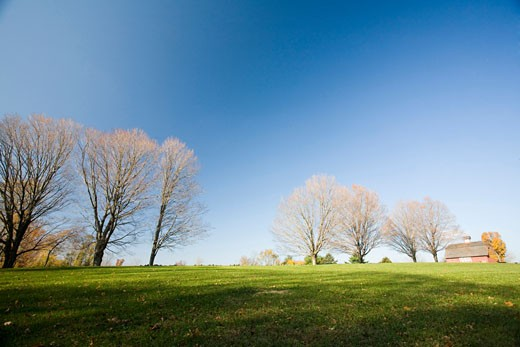 Scenic with bare maple trees and old barn  CT  USA : Stock Photo