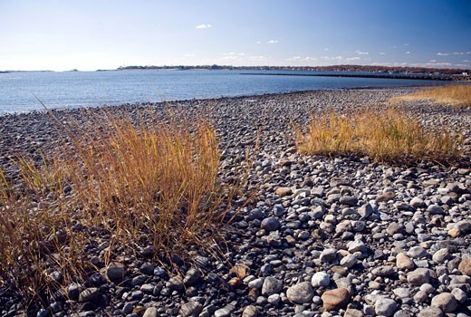 Stock Photo: 1925-1363 Pebbles at Compo Beach  CT  USA
