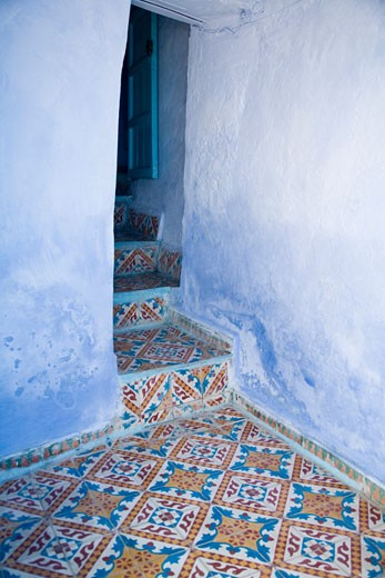 Typical hydraulic tile  Chefchaouen  Morocco : Stock Photo