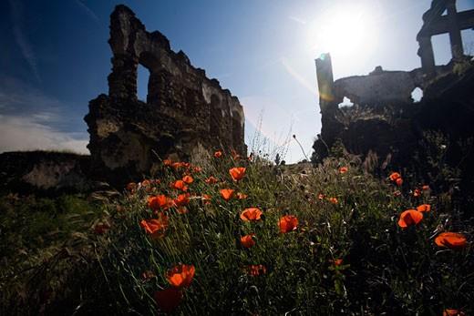 Ruins of San Antonio de Padua convent 15th century  Garrovillas  Caceres  Extremadura  Spain : Stock Photo