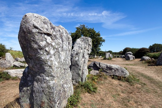 Stock Photo: 1925-2192 Megaliths of Kerherzo, Erdeven, Morbihan, Brittany, France