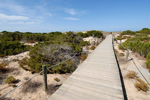 Travel Images of Formentera  Balearic Islands  Spain : Stock Photo