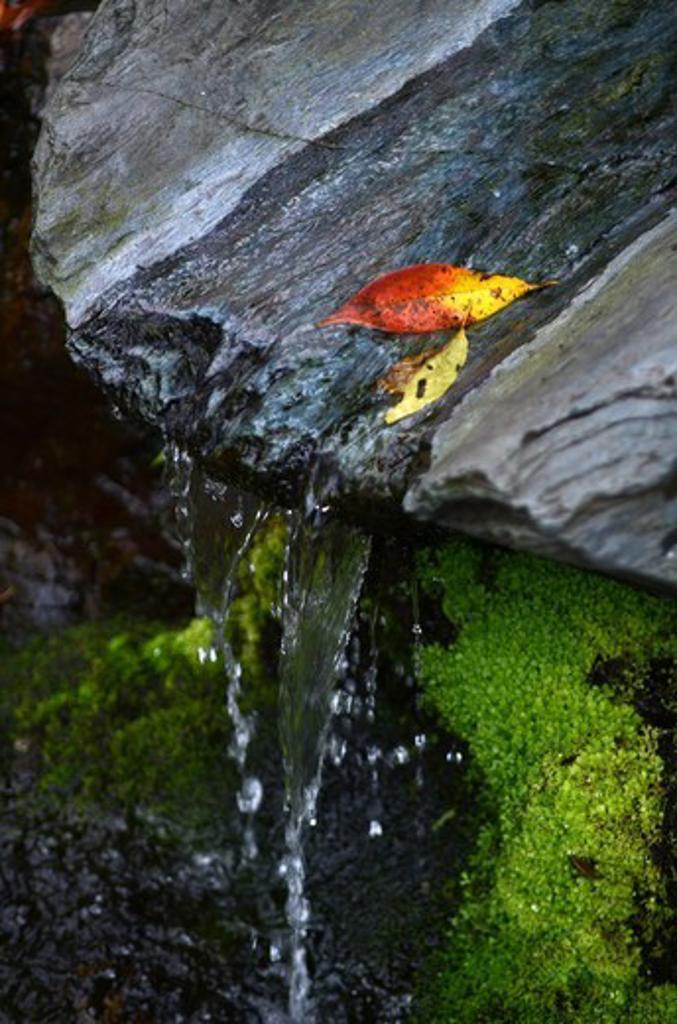 Stock Photo: 1938-3237 Stream flowing through rocks at Tenryu-ji Temple, Arashiyama, Kyoto Prefecture, Honshu, Japan