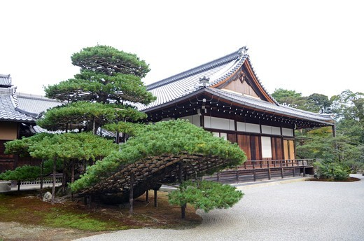 Stock Photo: 1938-3312 Temple of The Golden Pavilion, Kinkaku-ji Temple, Kyoto Prefecture, Honshu, Japan