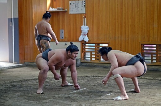 Stock Photo: 1938-3580 Japan, Tokyo, Ryogoku, Hard morning training at Sumo stable