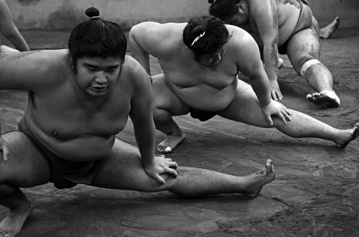 Stock Photo: 1938-3601 Japan, Tokyo, Ryogoku, Hard morning training at Sumo stable