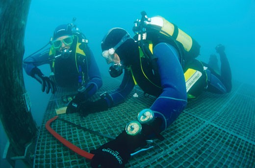 Group of divers working underwater  Austria : Stock Photo