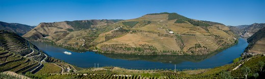 Portugal, Alto Douro, Douro Valley at Pinhao : Stock Photo