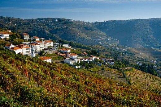 Portugal, Alto Douro, Village and vineyards in Douro Valley near Regua : Stock Photo