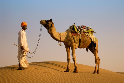 Rajput Tribesman And Camel : Stock Photo