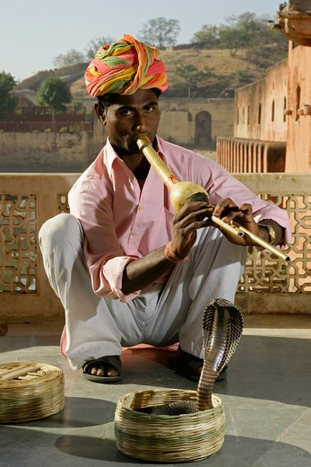 Snake Charmer & Cobra At The Amber Palace : Stock Photo