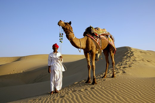 India, Rajasthan Rajput Tribesman & Camel : Stock Photo