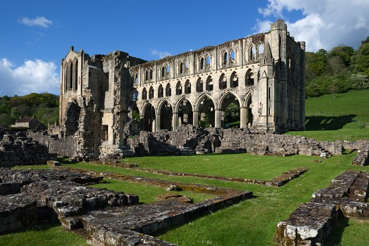 Ruins of 12th century Cistercian Abbey. : Stock Photo