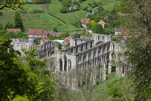 View over ruined 12th century Cistercian Abbey from Rievaulx Terrace. : Stock Photo