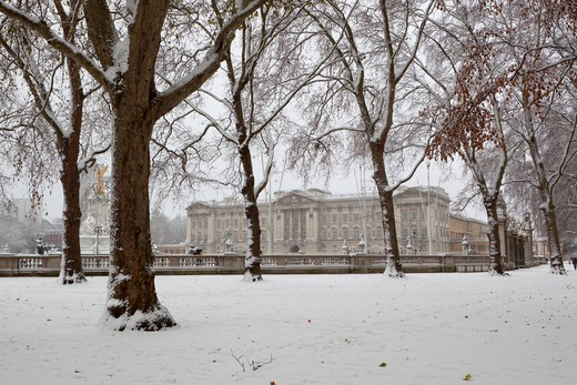 England - London - London - Buckingham Palace in snow from Green Park : Stock Photo