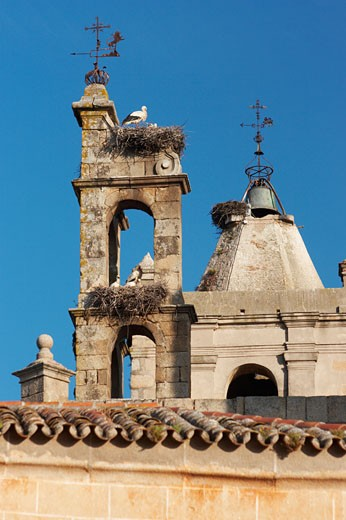 Caceres, White Storks And Nests On Church : Stock Photo