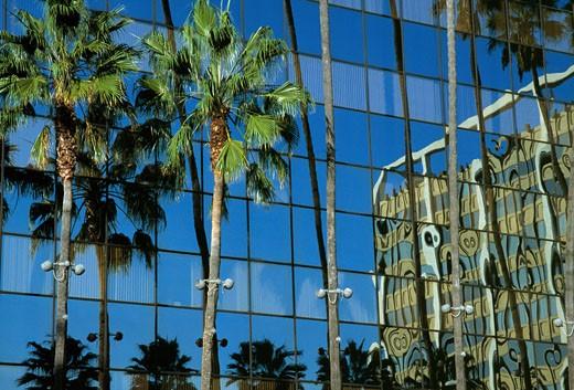 Hollywood  Movie Production Company : Stock Photo