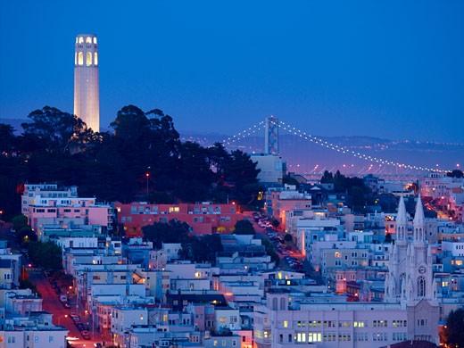 Telegraph Hill & Coit Tower, San Francisco : Stock Photo