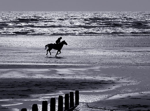 Horse Riding On Camber Sands Beach : Stock Photo