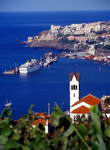 Funchal : Stock Photo