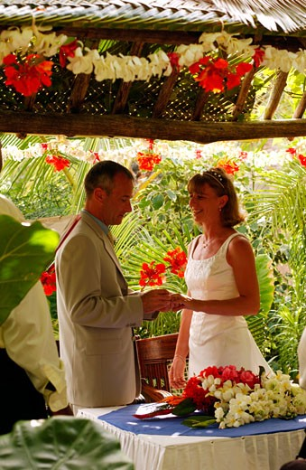 Turtle Bay Beach Club, Wedding : Stock Photo