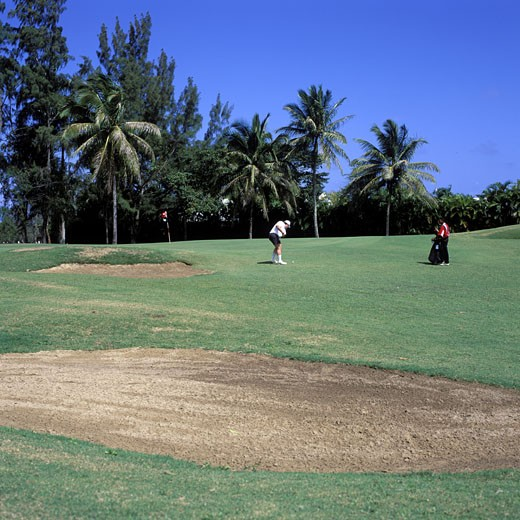 Golfcourse, Daytime View : Stock Photo