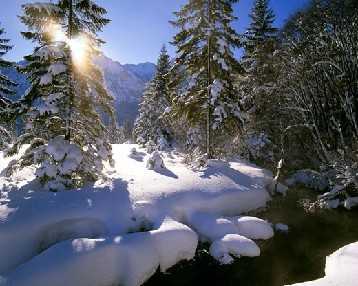 Bavaria: Wintertime near Ettal : Stock Photo