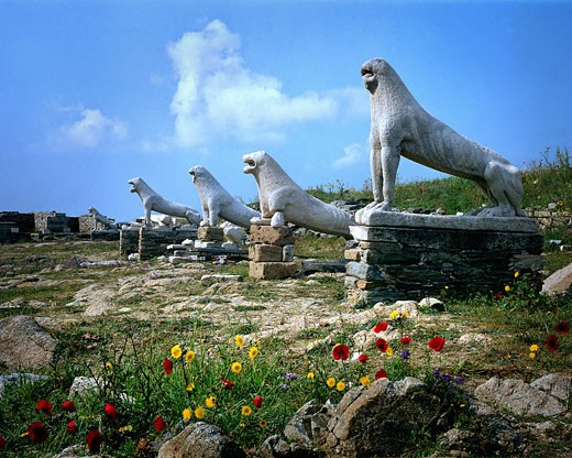 Delos, Terrace Of The Lions : Stock Photo