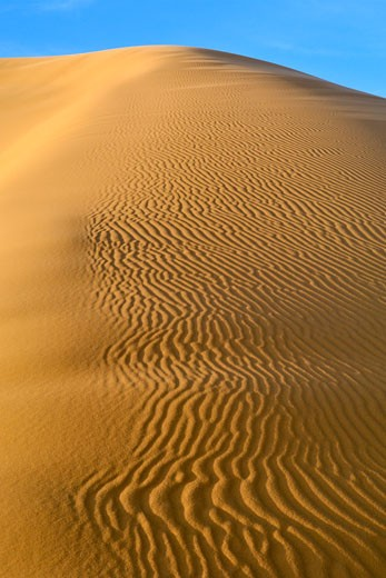 Patterns In The Sand Of The Erg Chebbi Dunes On The Periphery Of The Sahara Desert In Eastern Morocco. : Stock Photo