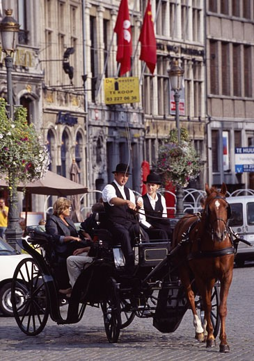 Antwerp, Grote Mart, Horse Drawn Carriage : Stock Photo