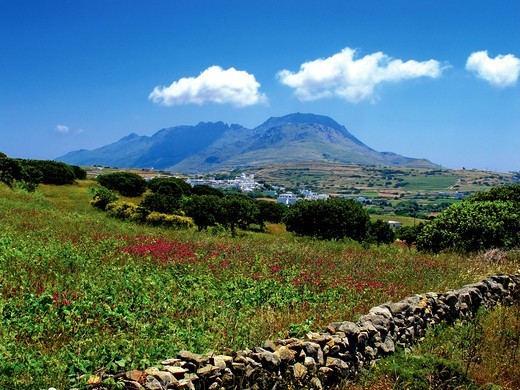 Stock Photo: 196-2570 Greece, Cyclades, Tinos island, Tinos village, Fields