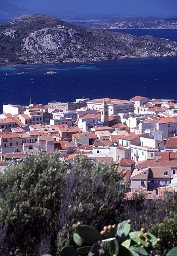 Maddalena View : Stock Photo