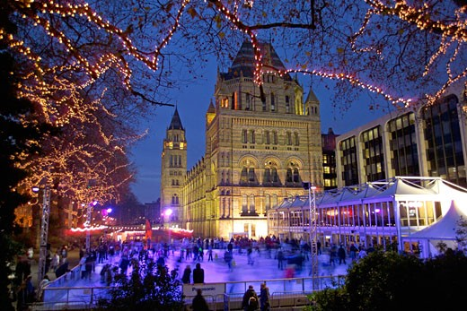 Natural History Museum, Christmas Ice Rink : Stock Photo