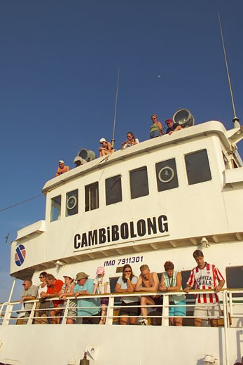 River Gambia, Dolphin Watching : Stock Photo