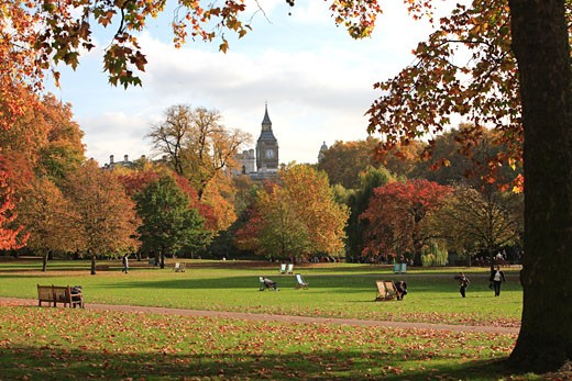 London, St James Park, Big Ben, Autumn : Stock Photo