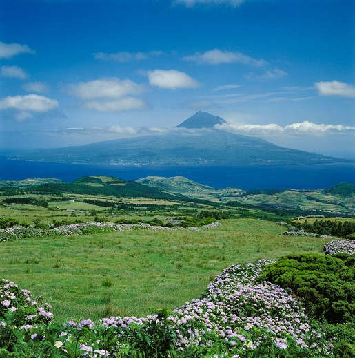 Portugal, The Azores, View From Faial Island To Pico : Stock Photo