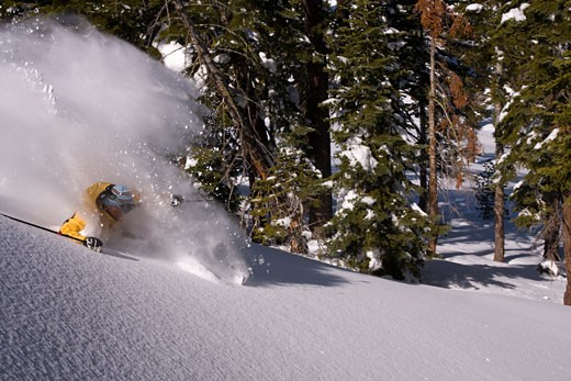 A man skiing on a sunny day in fresh powder at Northstar near Lake Tahoe in California : Stock Photo