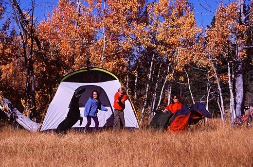 Stock Photo: 1989-2012 A family playing with a dog while camping near Truckee CA