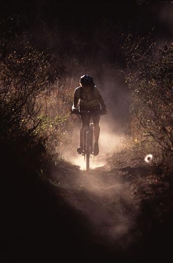 A woman mountain biking down a dusty single track trail near Truckee CA : Stock Photo