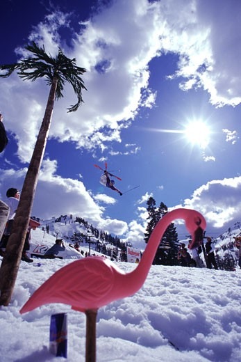 A man jumping on skis at Squaw Valley in California : Stock Photo