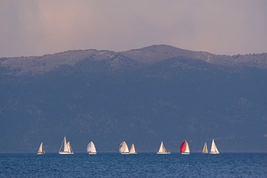 Stock Photo: 1989-4279 Sailboats on Lake Tahoe