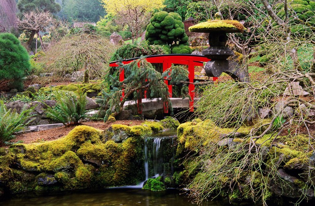 Japanese Garden in Spring, Butchart Gardens, Victoria, British Columbia, Canada : Stock Photo