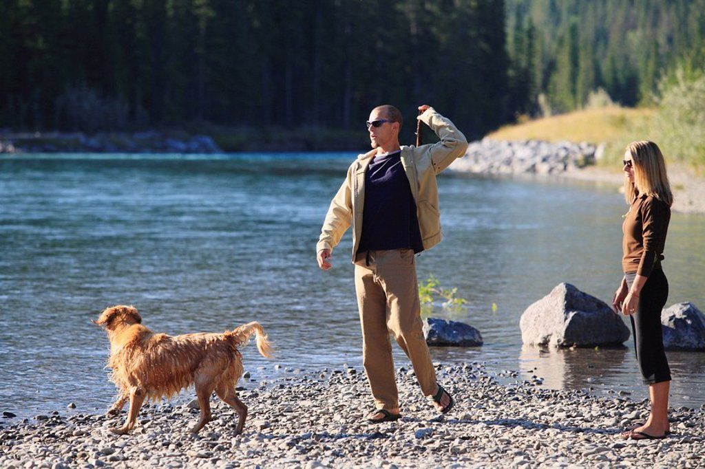 A young married couple and their golden retriever dog play fetch with a stick by the Bow River in Canmore, Alberta, Canada : Stock Photo