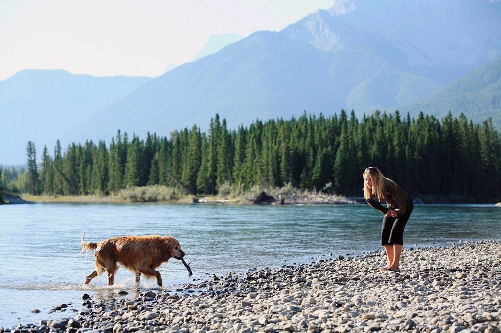 Stock Photo: 1990-11657 Young blonde woman playing with her golden retriever dog by the Bow River, Canmore, Alberta, Canada in the Canadian Rocky Mountains