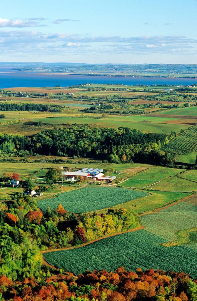Stock Photo: 1990-12353 Farms and apple orchards, Blomidon lookout, Nova Scotia, Annapolis Valley, Canada, Agriculture