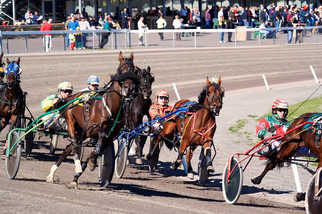 Stock Photo: 1990-12583 Harness Racing, Charlottetown Driving Park, Prince Edward Island, Canada