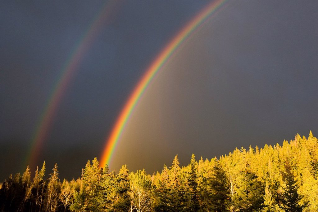A double rainbow during a storm in Banff National Parknear Banff Alberta, Canada : Stock Photo
