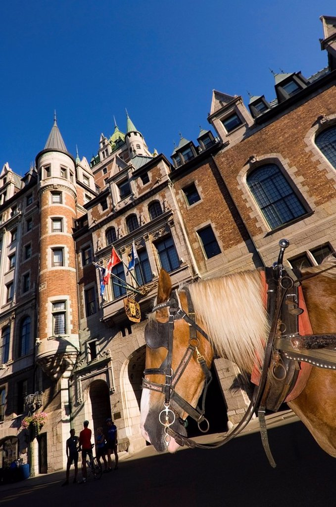 Chateau Frontenac Hotel, Quebec City, horse from carriage in foreground, Quebec, Canada : Stock Photo