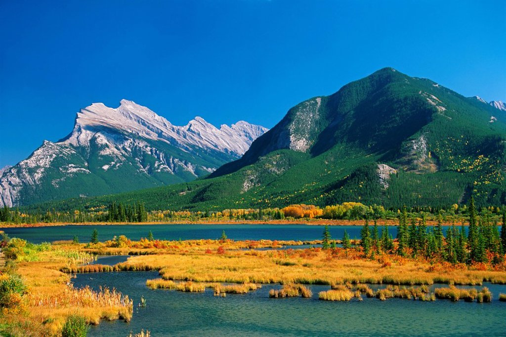 Stock Photo: 1990-14878 Mount Rundle and Sulphur Mountain as seen from Vermilion Lakes in autumn, Banff National Park, Alberta, Canada